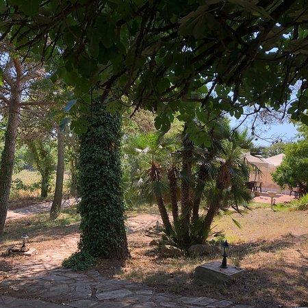 Begues, Espagne : photo1.jpg
