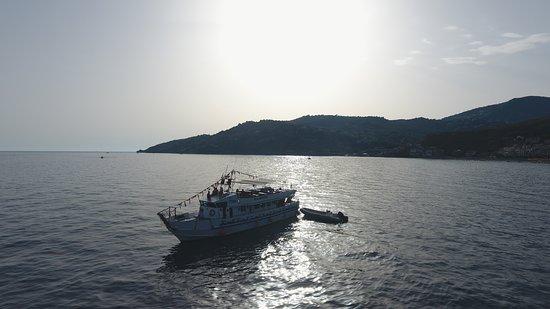 Seashuttle Costa Cilento: SSCC