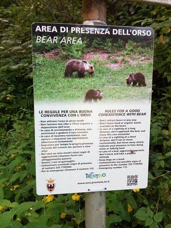 Breguzzo, Italy: IMG_20180819_103421_large.jpg