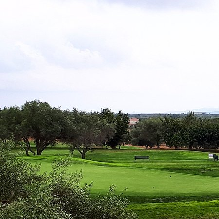 Villages Golf Panoramica: IMG_20180811_221518_336_large.jpg