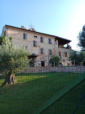 Ortezzano, Italia: Agriturismo Vecchio Gelso