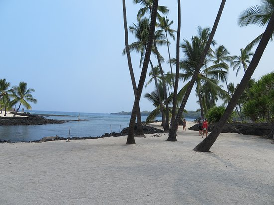‪‪Pu'uhonua O Honaunau National Historical Park‬: White Sand Beach with Palm/Coconut Trees‬