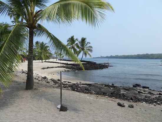 Pu'uhonua O Honaunau National Historical Park: White Sand Beach with Palm/Coconut Trees II