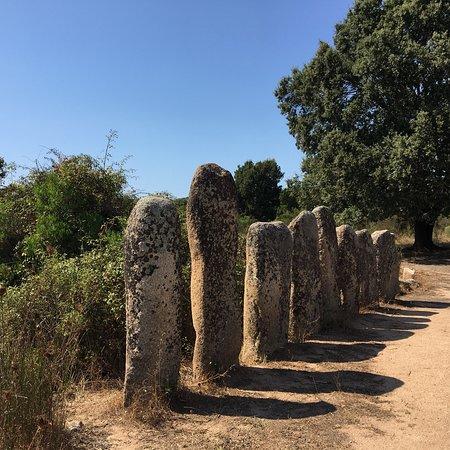 Sartene, France: Alignements Palapaggiu