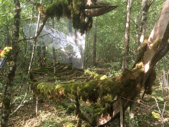 La Forêt des Géant Vert