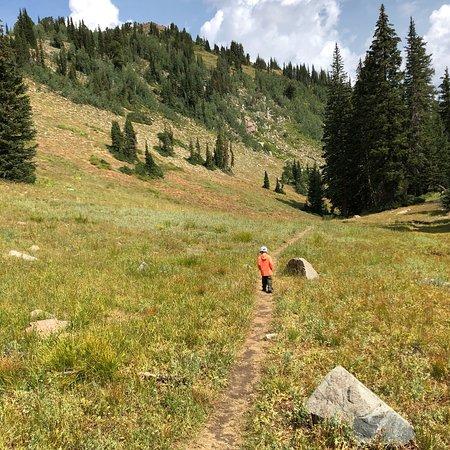 Big Cottonwood Canyon (Salt Lake City) - 2018 O que saber