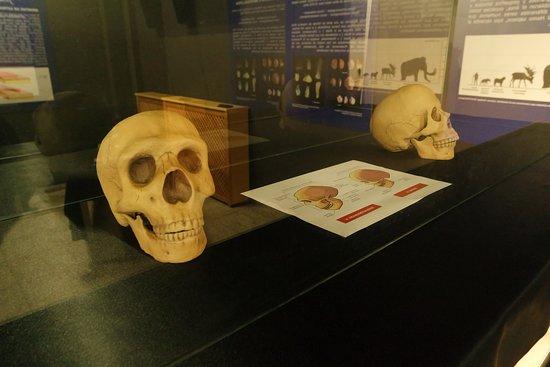 Centro de Interpretacion del Paleolitico