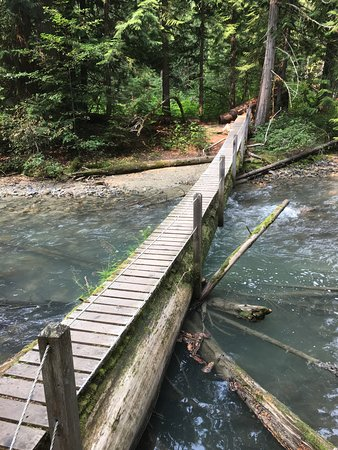 Birken, Canada: Bridge at the start of the Goat Lookout Trail