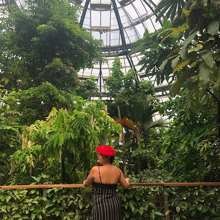 The Huntington Library, Art Collections and Botanical Gardens ...