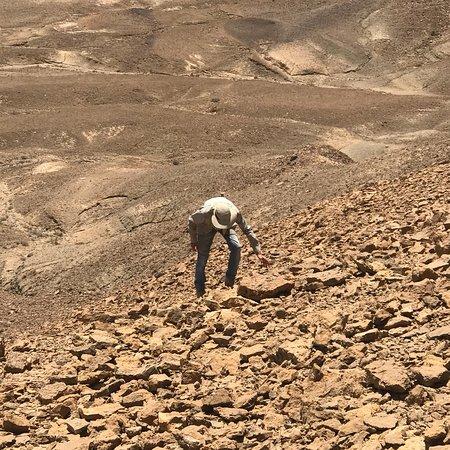 Desert Prime: photo5.jpg