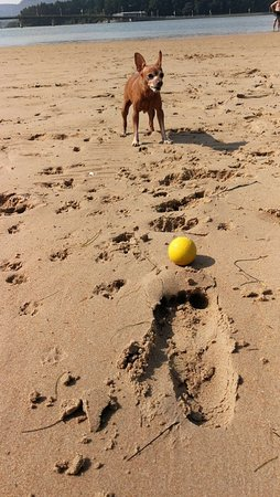 Playa de El Puntal: Playa del Puntal