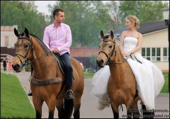 Lytkarino, רוסיה: Фотосессии с лошадьми