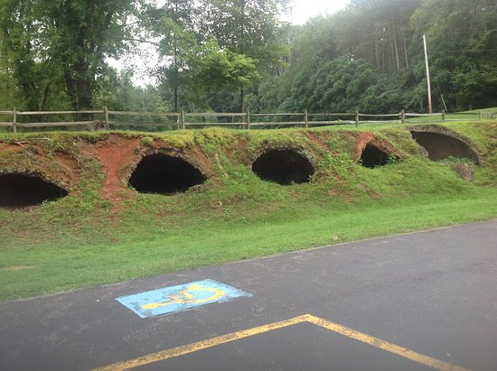 Leetonia, OH: Hobbit homes?