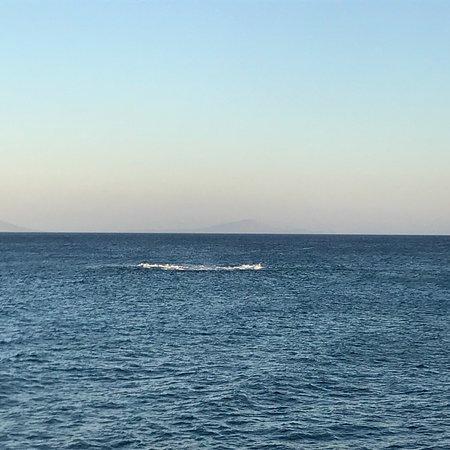 Ampelas, Greece: photo2.jpg