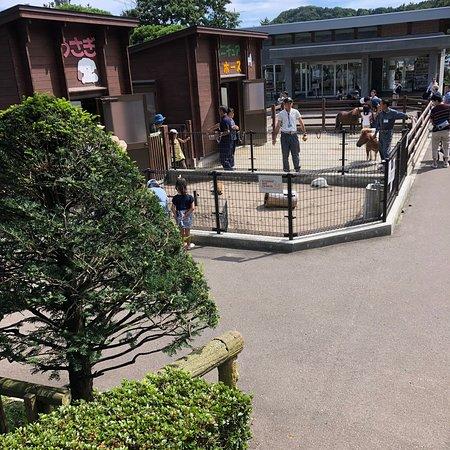 Hakodate Park Kodomo No Kuni