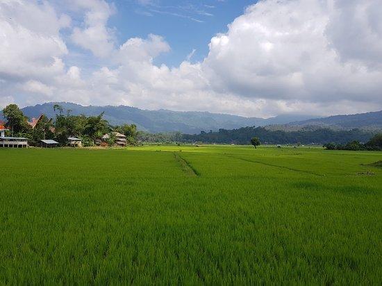 Toraja Village: 20180818_100519_large.jpg