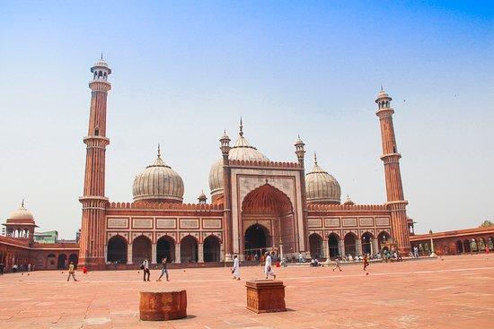 Siti di incontri gratuiti Delhi India