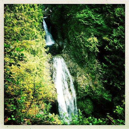 Gold Bar, Ουάσιγκτον: More Falls