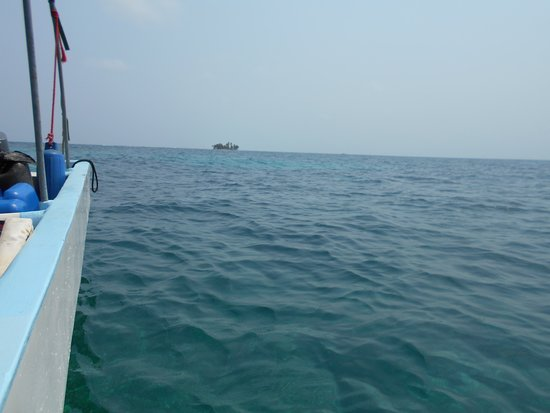 Seemore Adventures – Dive & Adventure Shop : On the way to second dive