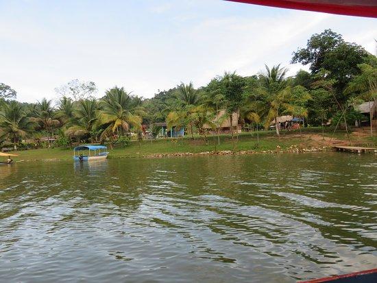 Laguna Sauce