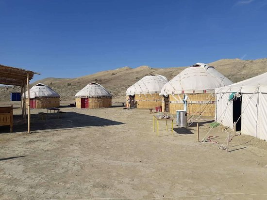 BesQala Tour Agency: Aral sea Yurt