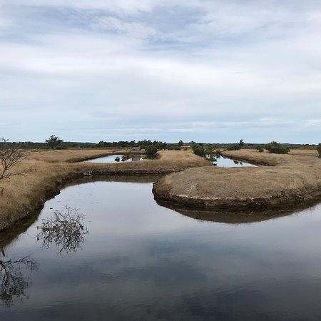 Les Trois Marais Salants de l'Ile d'Olonne