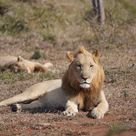 Hlane Royal National Park, Eswatini (Swaziland): photo1.jpg
