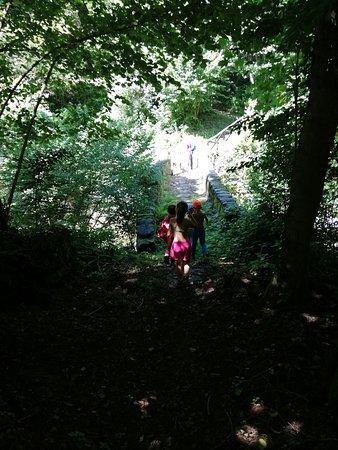 Mulìn Turcìn: passeggiata nel bosco