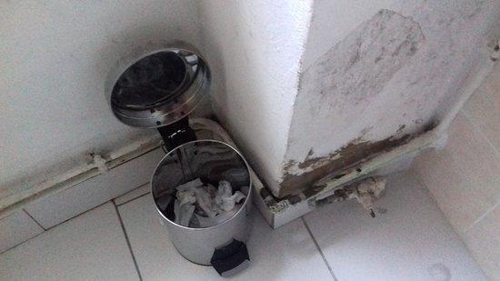 Realmont, France: insalubre poubelle; sans sac...