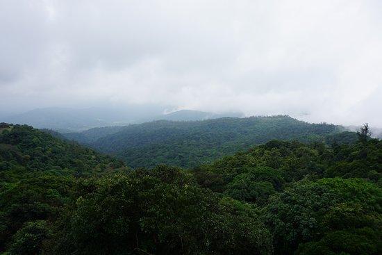 Bhagamandala, Indien: View from Tala Kaveri