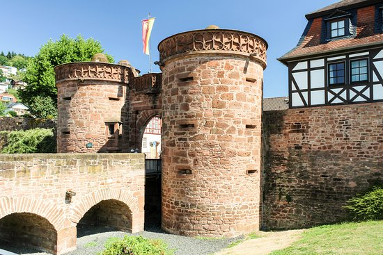 Sandrosenmuseum Buedingen