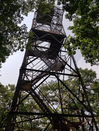 Dorset Scenic Lookout Tower: 20180815_121322_large.jpg
