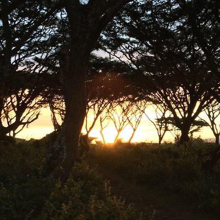 Lemala Ngorongoro Tented Camp: photo6.jpg