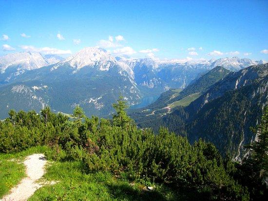 Nationalparkzentrum - Haus der Berge: Nature at its best