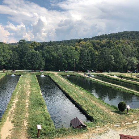 Arpasu de Sus, โรมาเนีย: photo0.jpg