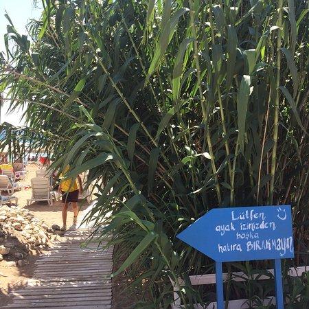 Mitos Plaji foto