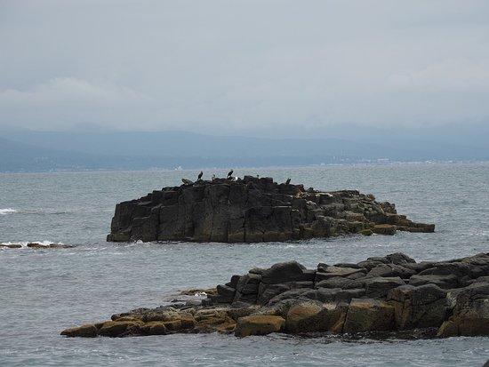 Rumoi, Japan: 黄金岬からの風景