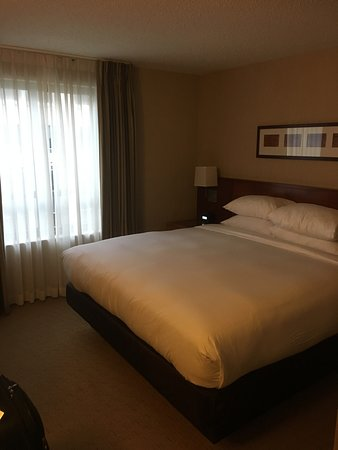 Embassy Suites by Hilton Washington-Convention Center: King bed