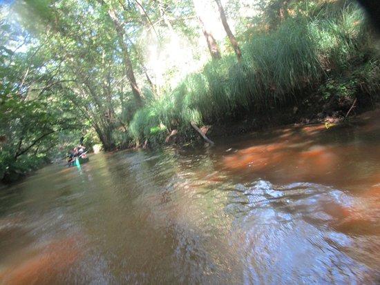 Commensacq, France : descente de la Leyre en canoë