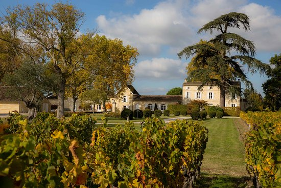 Saint-Emilion, France: getlstd_property_photo