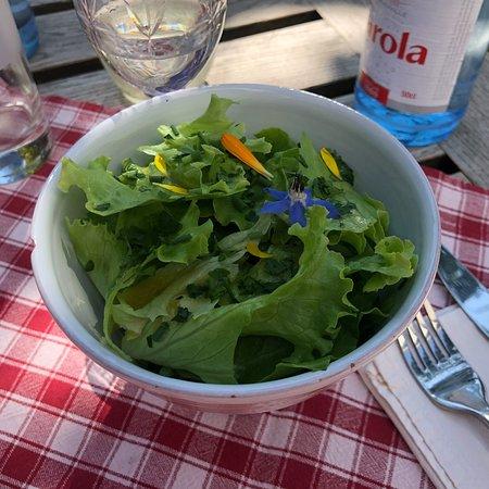 Wunderbarer Garten mit super Essen!