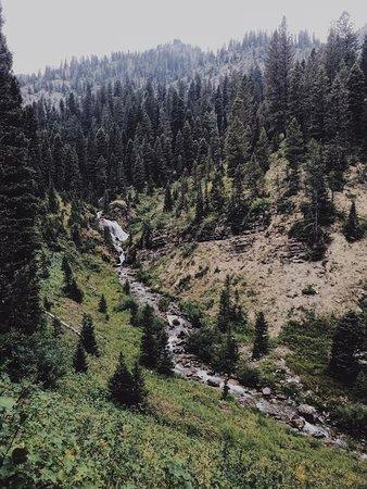 Alpine, WY: Found a waterfall!