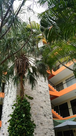 Hotel Ambassador Merida: ♥