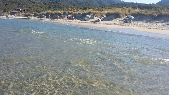 Sarti Beach: 20180810_174824_large.jpg