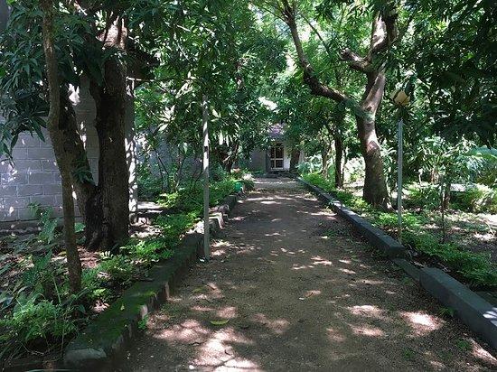 Gambela, Ethiopia: Walkway to the bungalows