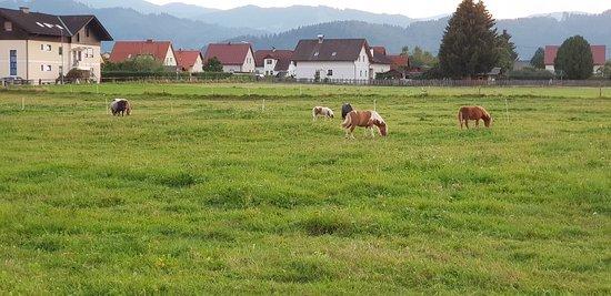 Fohnsdorf, Østerrike: 20180819_200034_large.jpg