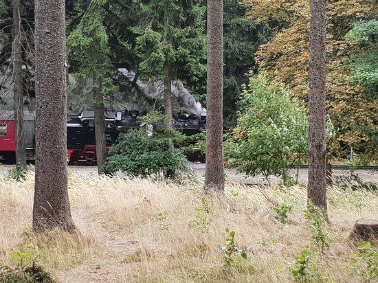 Drei Annen Hohne, Duitsland: 20180813_120353_large.jpg
