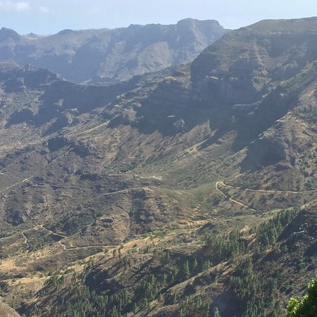 Parque Nacional del Garajonay: photo1.jpg