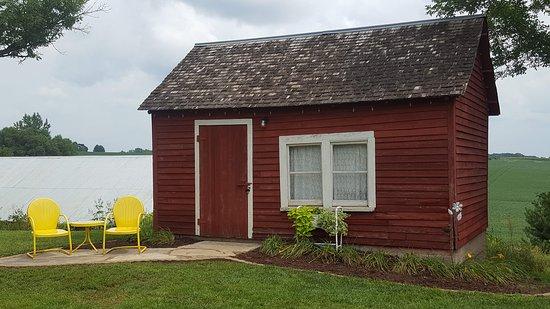 Northfield, MN: little red cabin