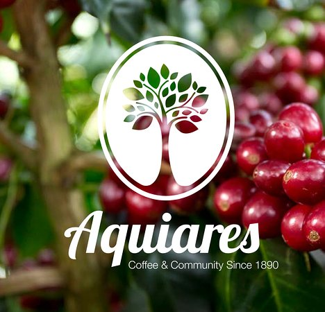 Aquiares Coffee & Community Experience
